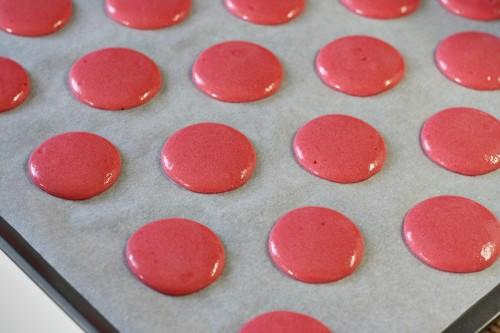 Macarons na plechu před pečením