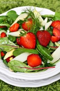 Salát schřestem, fenyklem a jahodami