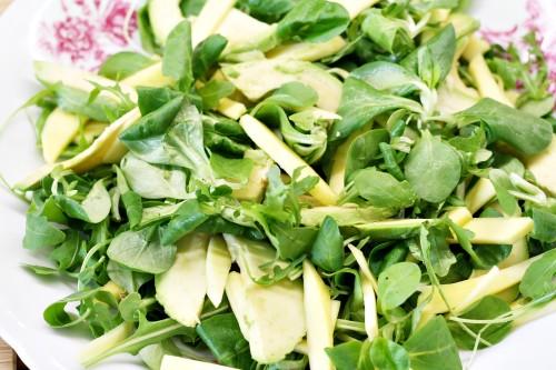 Salát na talíři