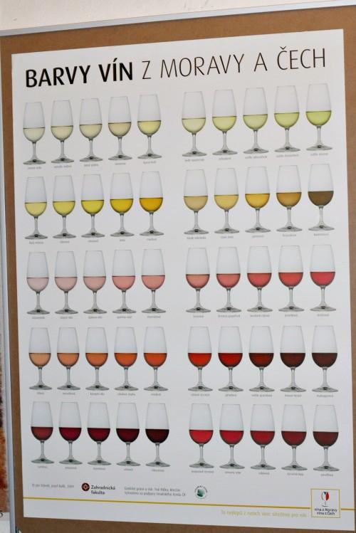 Barvy vín