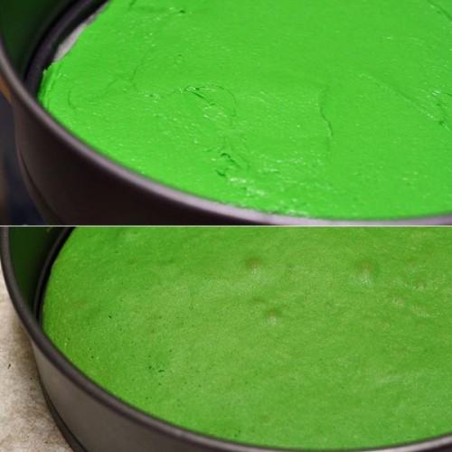 Zelená vrstva
