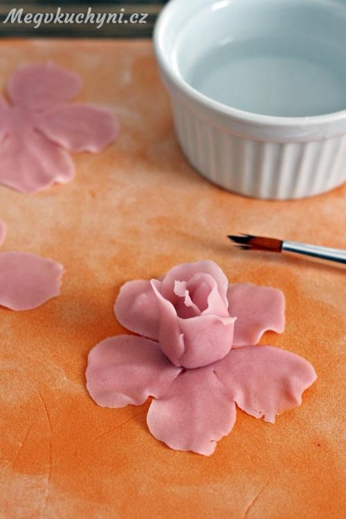 Druhá řada okvětních lístků růže
