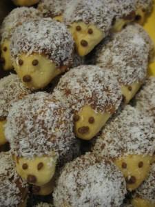 Vánoční ježci